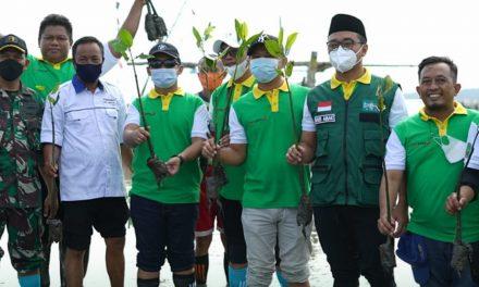 revitalisasi kawasan pantai dan wisata maritim kota pasuruan, wakil wali kota lakukan penanaman mangrove